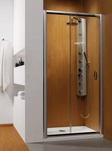 33303-01-01N Душевая дверь в нишу Radaway Premium Plus DWJ 33303-01 100 см